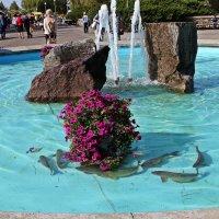 Рыба в городском фонтане :: Лидия (naum.lidiya)
