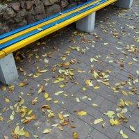 Падают листья :: Анатолий ❉