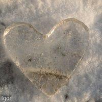 ледяное сердце :: игорь душкин