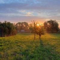 Утро в деревне :) :: Кирилл Малов