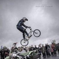 Мгновение полета :: Владимир Смирнов