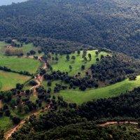 Вид с горы Эль Фар :: Маргарита