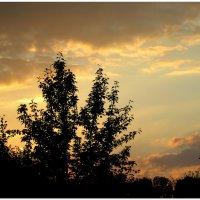 Вечернее небо в сентябре... :: Тамара (st.tamara)