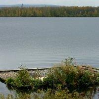 Старый плот :: Нэля Лысенко