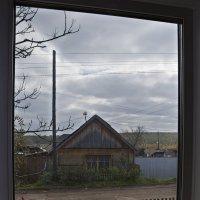 Из окна :: Андрей Елисеев