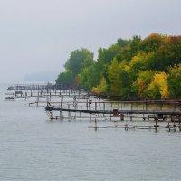 Осень на Обском море :: Елена Баландина