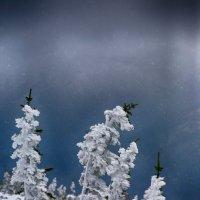 Где-то на белом свете... :: Константин Еськин