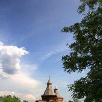 Коломенский пейзаж... :: Nikanor