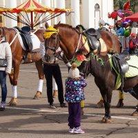 бизнес-лошадки :: gribushko грибушко Николай