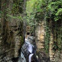 Агурское ущелье :: Михаил Нога