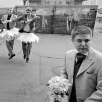 Лебедятьки. :: Георгий Розов