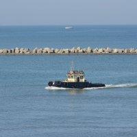 Порт Кавказ, катерок :: Михаил Бреднев