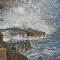 Вода и камень.. :: Natali Zoldi