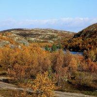 Осень :: Виктор Шведин