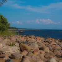 Камни Финского залива :: Дмитрий Рутковский