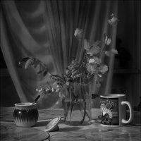 Вечерний чай :: Игорь Чубаров