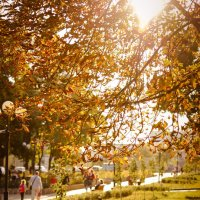 Этот город самый лучший город на Земле :: Римма Федорова