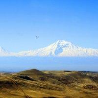 Путешествие по Армении. Арарат: Большой и Малый :: Алексей Беликов