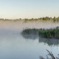 Туман над озером :: Эдуард Пиолий