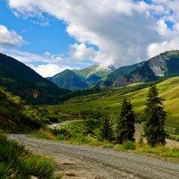 В горах Кунгей Ала-Тау :: Сергей Рычков