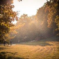 парк Коломенское :: Daniel Woloschin