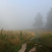 туман :: Илья