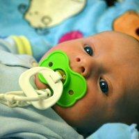Малыш :: Лилия Саванец