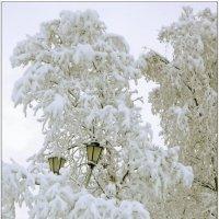 Североморская зима :: Кай-8 (Ярослав) Забелин