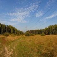 Когда иду я Подмосковьем IMG_0347 :: Андрей Лукьянов