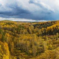 осень :: Сергей Перегудов