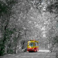 Обыкновенный трамвай :: Elena Ignatova
