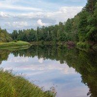 Западная Двина :: Владимир Демчишин