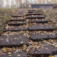 Ступает осень по ступеням, листвою жёлтою шурша... :: Лилия *