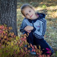 Осень 2014 г. :: Антонина Гусева
