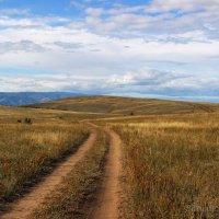 по дороге с сенокоса :: василиса косовская