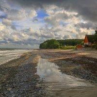 Прогулка по берегу моря. :: Марат Макс