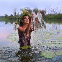 ### :: Анастасия Сесорова