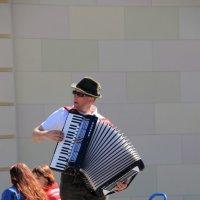 уличный музыкант :: Olga