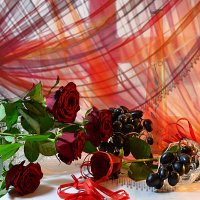 Розы :: Наталия Лыкова