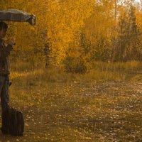 Осенний дождь :: Роман Кондрашин