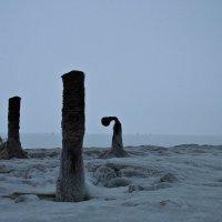 штыри в камне :: Полина