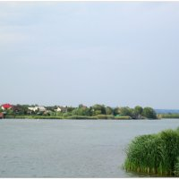 Донской пейзаж... :: Тамара (st.tamara)