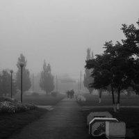 Сегодняшний туман :: Наталья Карышева