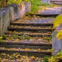Старая лестница.... :: игорь козельцев