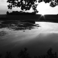 закат. :: Артём Мясников