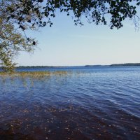 то же озеро :: Валентина Папилова