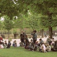 Пикник по-французски :: ИРЭН@ Комарова