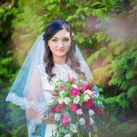 Невеста из сказки :: Александр Шнейдерман
