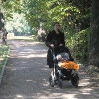 Прогулка в осеннем парке :: Наталья Александрова