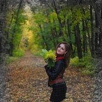 Осенний контраст :: Владимир Анатольевич